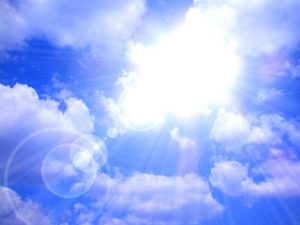 暑い日差し